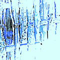 Digital Weave by Lenore Senior