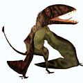 Dimorphodon Pterosaur by Corey Ford
