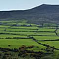 Dingle Peninsula Panorama Ireland by Teresa Mucha