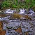 Dingmans Creek II by Rick Berk