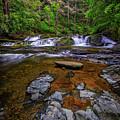Dingmans Creek by Rick Berk
