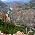 Dinosaur National Monument by George Tuffy