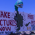 Dinosaur Sign Take Pictures Now by Garry Gay