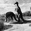 Dinosaurs: Trachodon by Granger
