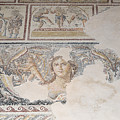 Dionysus Mosaic Mona Lisa Of The Galilee by Ilan Rosen