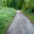 Dirt Path And Surrounding Bush Seen From A Cyclist's Point Of View by Sami Sarkis
