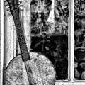 Dirty Banjo Mandolin by Bill Cannon