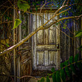 Disappointed Door by Roger Monahan