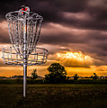 Disc Golf Anyone? by Ron Pate
