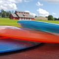 Disc Golf In Auburn by Lee Gray