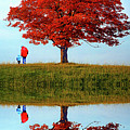 Discovering Autumn - Reflection by Steve Harrington