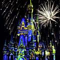 Disney 12 by Janet Fikar