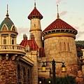 Disney World by Paulette Thomas