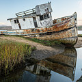 Disrepair In Point Repair by Jon Glaser