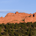 Distant Camels In The Garden Of The Gods by Steve Krull