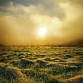 Distant Mist Horizon by Phil Koch