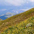 Distant Peak Near Cottonwood Pass Colorado by Steve Krull