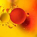 Distant Suns by Patti Schulze