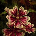 Distinctive Blossoms by Sherman Perry