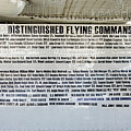 Distinguished Flying Command  by Chuck Kuhn