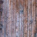 Distressed Door by Herman Robert
