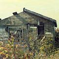 Distressed Honey House Door County Wisconsin by Nikki Vig