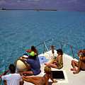 Diveboat At Little Cayman by Carl Purcell