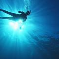 Diver On Mahi Wreck by Bob Abraham - Printscapes