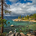 Divers Cove At Lake Tahoe by Dianne Phelps