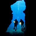 Divers Silhouetted Through Reef by Dave Fleetham - Printscapes