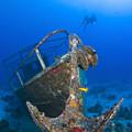 Divers Visit The Pelicano Shipwreck by Karen Doody