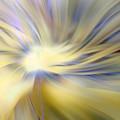 Divine Energy by Lauren Radke