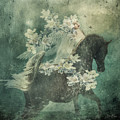 Divine Horse Whisperer by Barbara A Lane