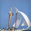 dk tall ships fiddlers green gaff schooner lyr 1973 D K Spinaker by Eloisa Mannion
