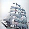 dk tall ships sagres i lyr 1896 D K Spinaker by Eloisa Mannion