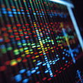 Dna Sequence On A Computer Monitor Screen by Tek Image