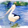 Do-00088 Pelican by Digital Oil