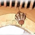 Do-00326 Old Lantern In Beiteddine by Digital Oil