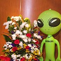 Do Aliens Get Hay Fever by Richard Henne