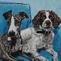 Dobby And Mocha by Wendy Whiteside