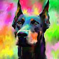 Doberman Pincher Dog Portrait by Svetlana Novikova