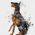 Doberman Pinscher by My Inspiration