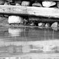 Dock Cribs  by Cathy Beharriell