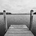Dock No Diving  by John McGraw