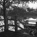 Dock On The Bayou by Leigh Ann Raab