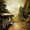 Dock On The Wetlands by Jessica Jenney