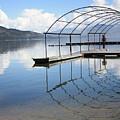 Dock Reflection by Carol Groenen