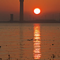 Dock Tower Sunrise by Ray Hydes