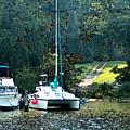 Docked On Chesapeake Bay by Elinor Mavor