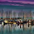 Docked Sailboats by David Patterson